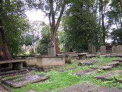 Graveyard_3